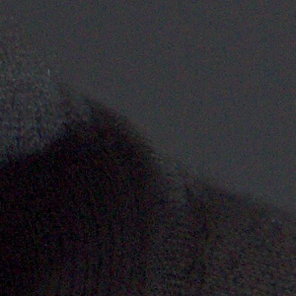 Closeup crop with no Impulse Noise Reduction